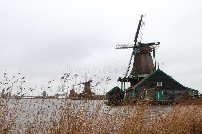 Windmühlen von Zaanse Schans lizenzfreie stockfotos