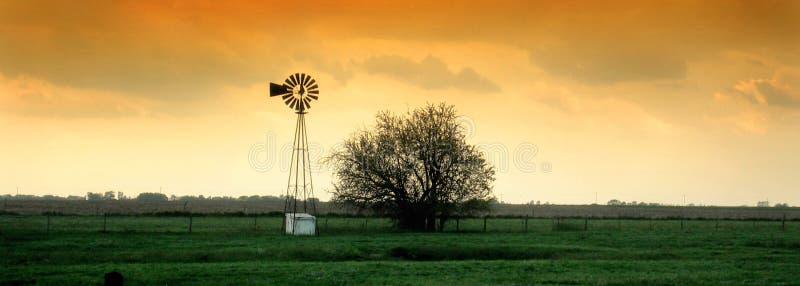 windmill arkivbilder