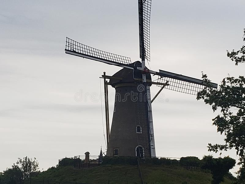 Windmill in Amsterdam royalty free stock photography