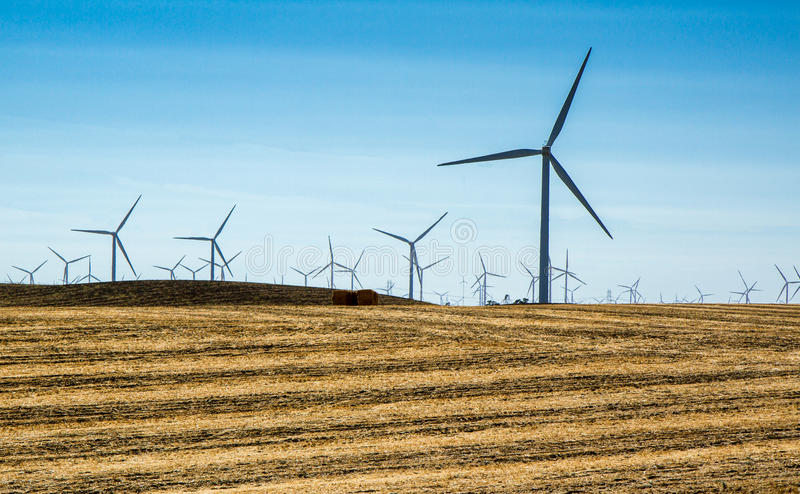 Windmill Array. Color landscape photo of an array of windmills in California, USA. Three-propeller windmills in silhouette on the horizon, blue sky, golden land royalty free stock images