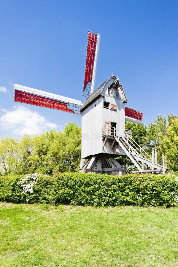 Windmill Av Terdeghem Royaltyfria Bilder