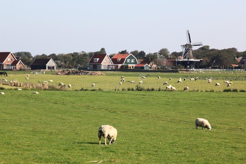 Windmill De Verwachting, Hollum, Ameland, Holland stock photo