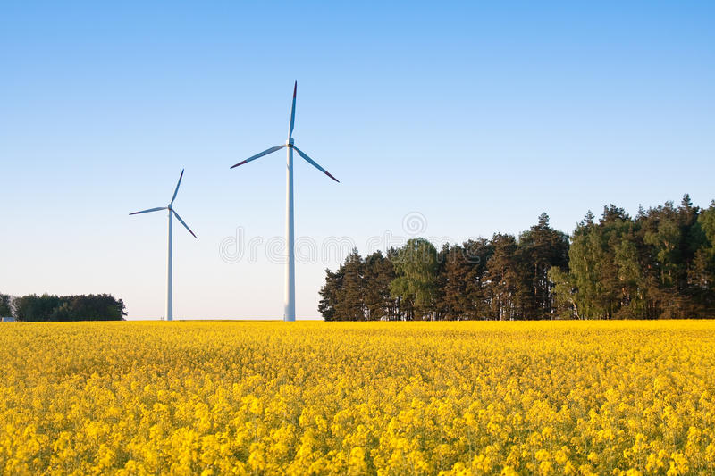 Windmill farm in the field royalty free stock images