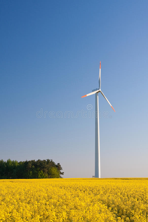 Download Windmill  Farm In The Field Stock Image - Image: 12104633