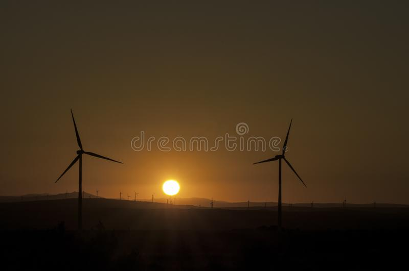 Windmill field at sunset. Spain royalty free stock image