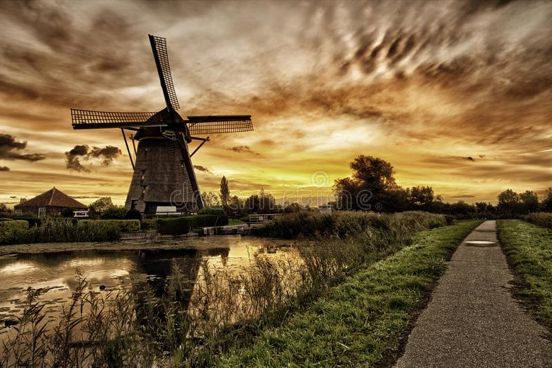 Windmill in the golden hour royalty free stock images