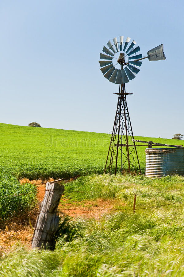 Windmill in green crops Southern Australia stock photo