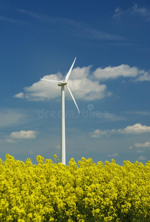 Free Windmill Green Power Royalty Free Stock Photo - 12207755