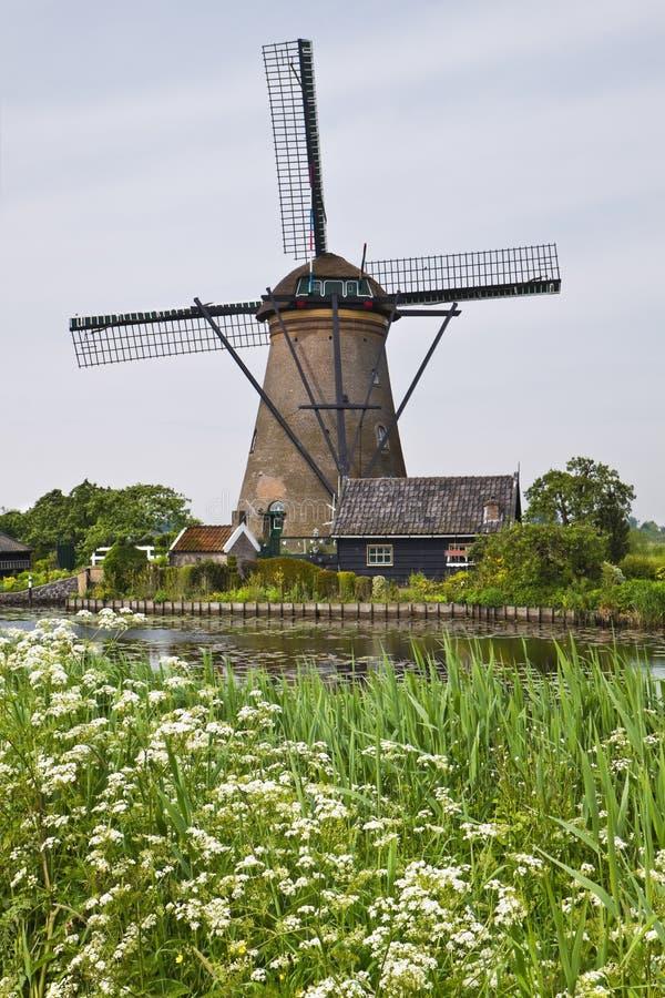 Free Windmill In Kinderdijk, Stock Image - 26006111