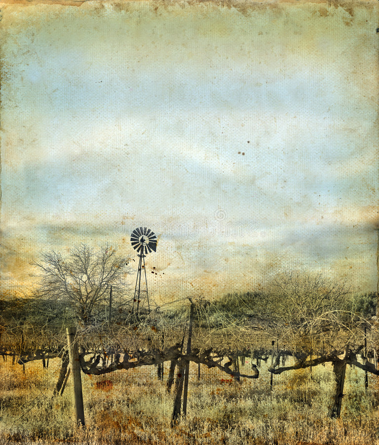Free Windmill In Vineyard On A Grunge Background Stock Photo - 6799280