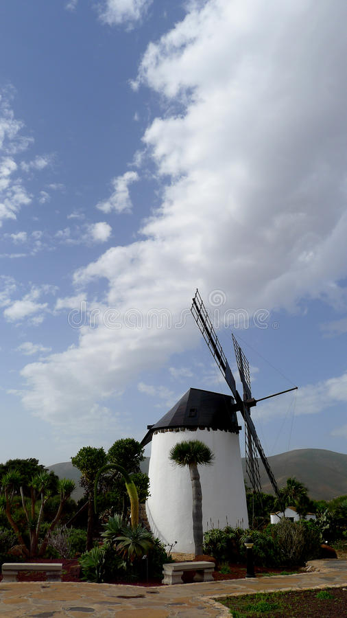 Windmill in Fuerteventura royalty free stock photos