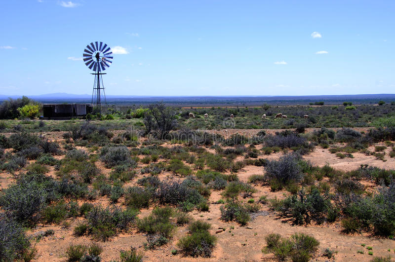 Windmill in the Karoo Desert. South Africa royalty free stock photo