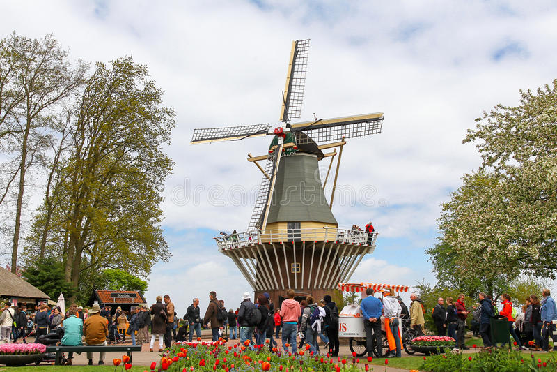 Windmill at the keukenhof garden royalty free stock photo