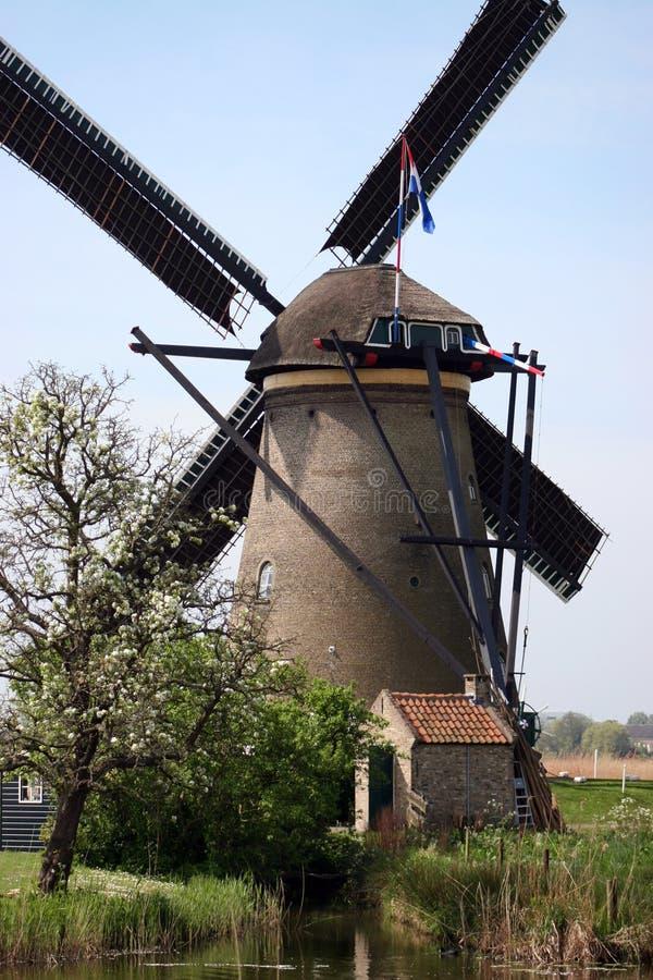 Windmill of Kinderdijk royalty free stock image