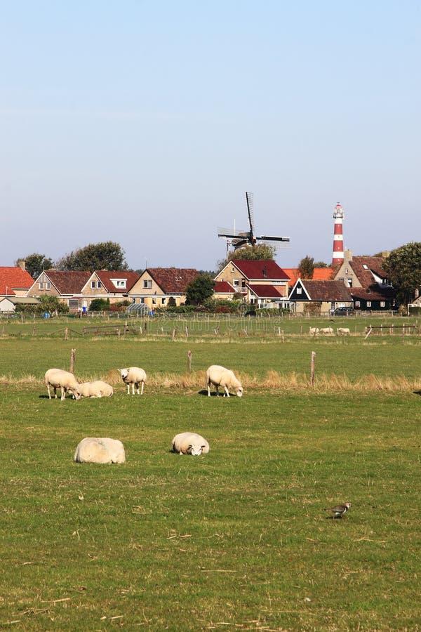 Windmill and lighthouse of Hollum Ameland, Holland stock photo