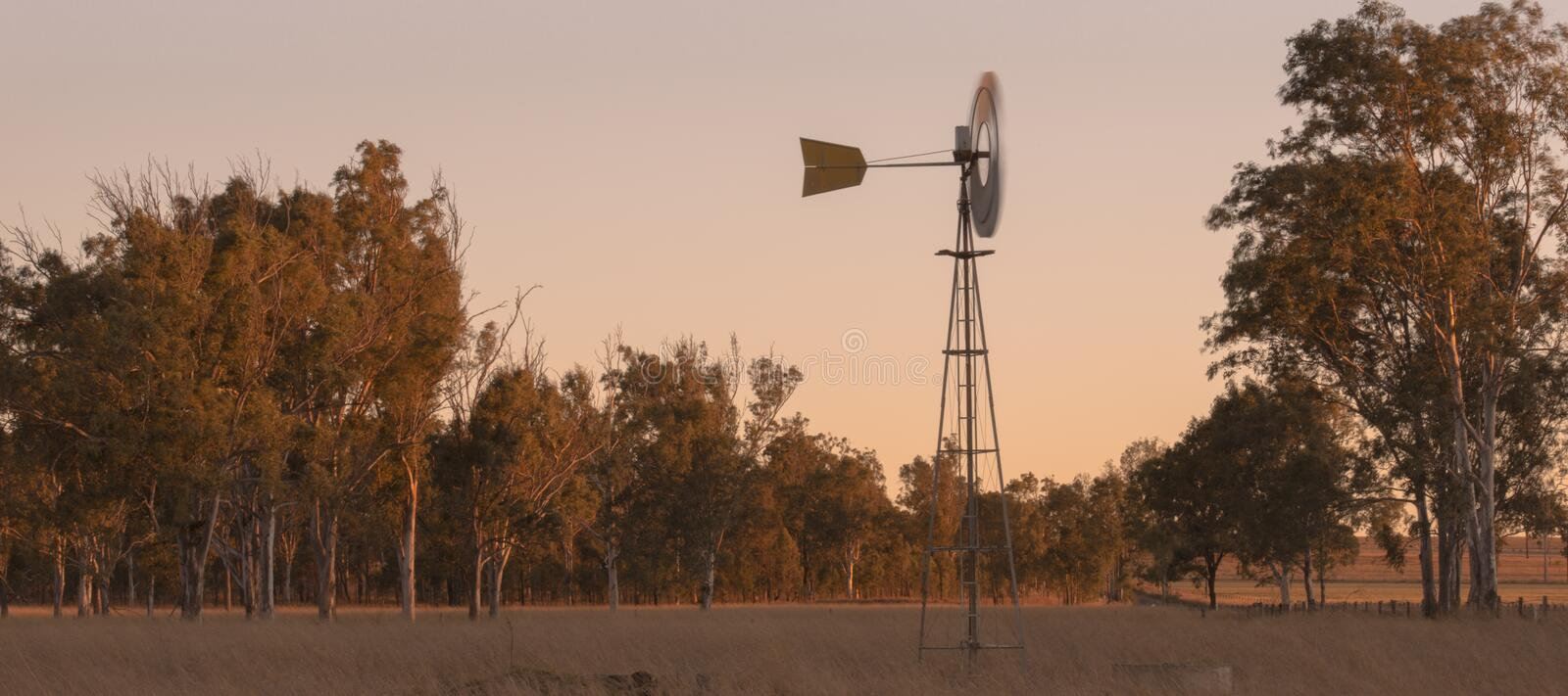 Windmill in a paddock stock photography