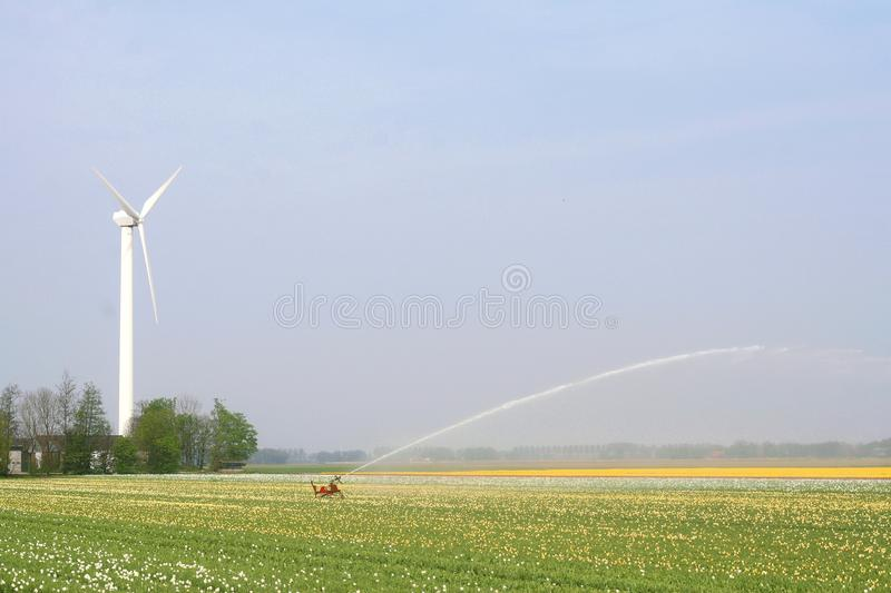 Modern wind turbine provides alternative energy for irrigation, Netherlands royalty free stock photos