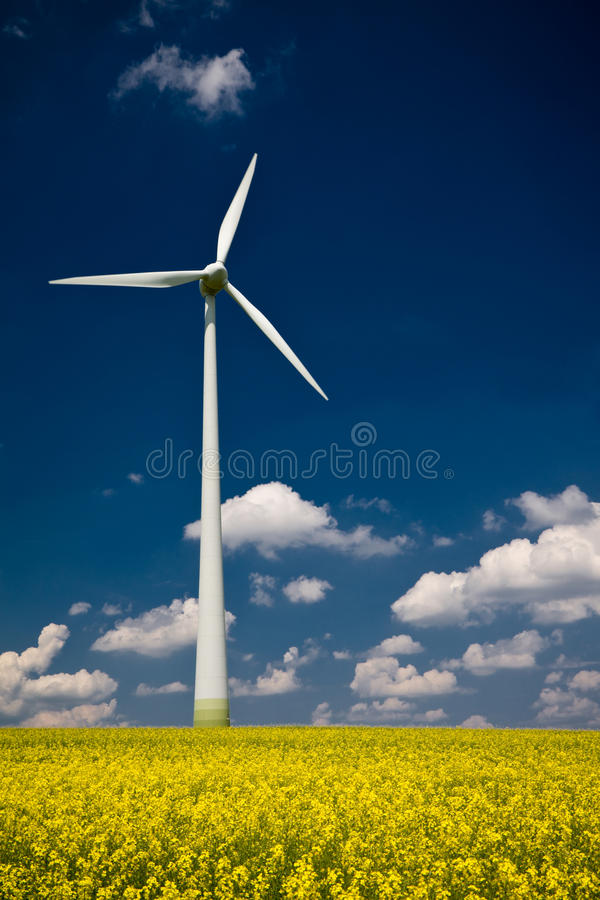 Download Windmill with stock photo. Image of area, mill, field - 22135978