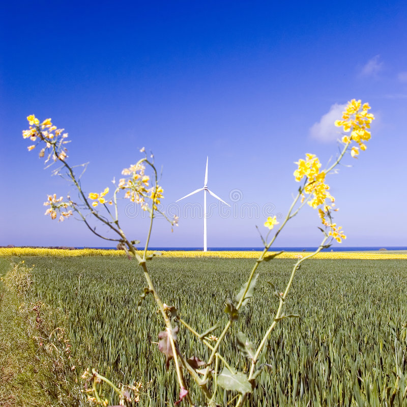Download Windmill and plant stock image. Image of powerful, modern - 3887925