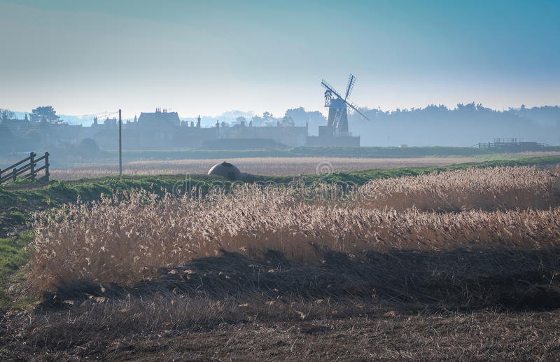 Windmill and reeds in north Norfolk, England royalty free stock images