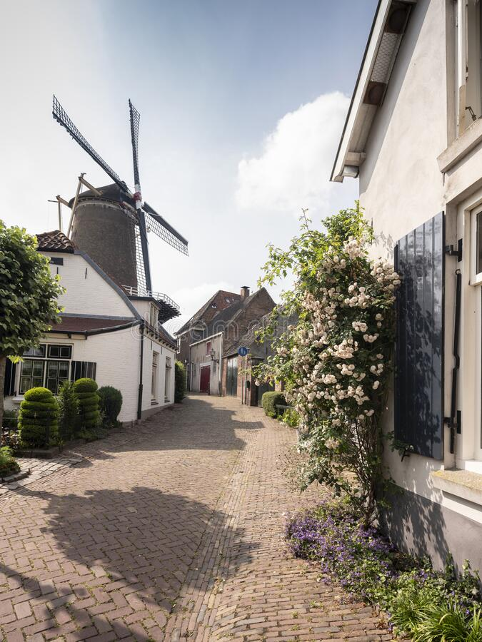 Windmill and sunny old summer street in wijk bij duurstede stock photography