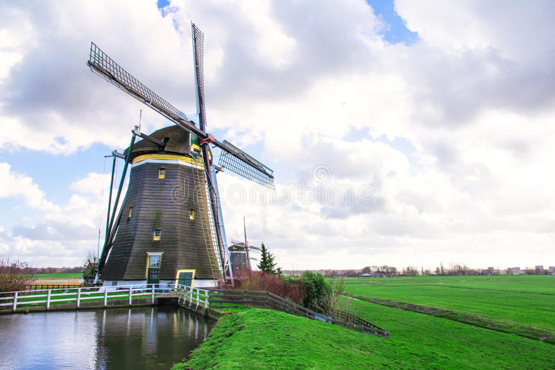 Windmill at the Tulip Bulb Farm stock image