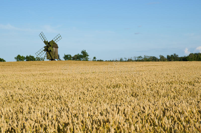 Windmill and wheat field stock photos