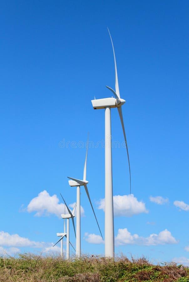 windmills fotografie stock libere da diritti