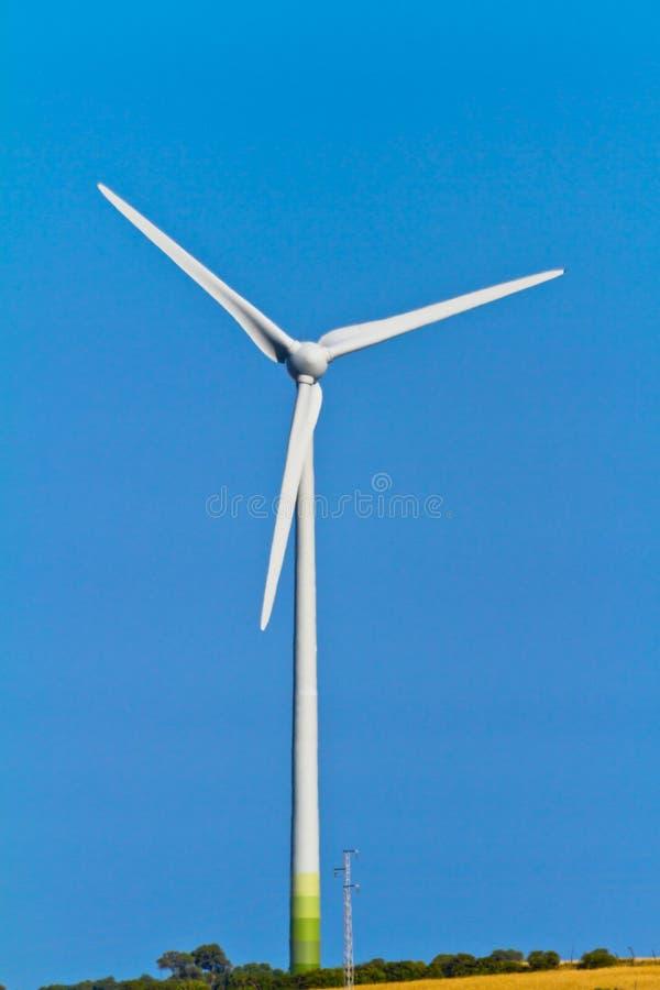 windmills royaltyfri foto