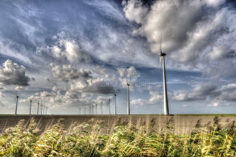 windmills imagens de stock