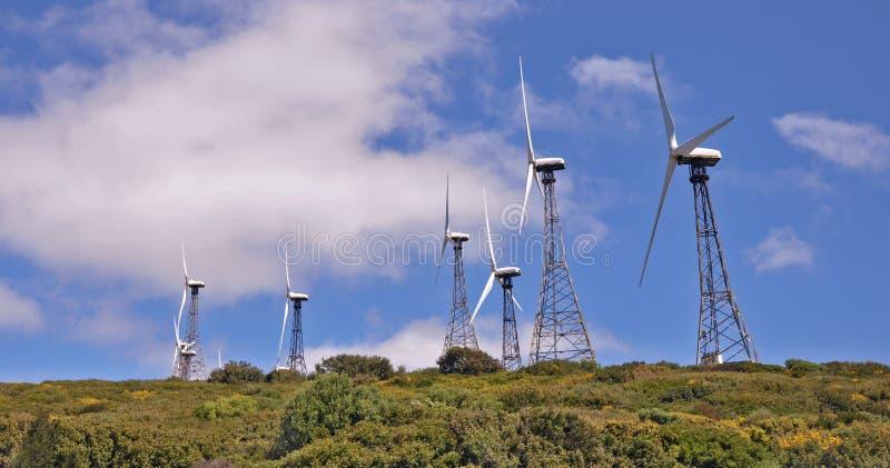 windmills fotografia de stock