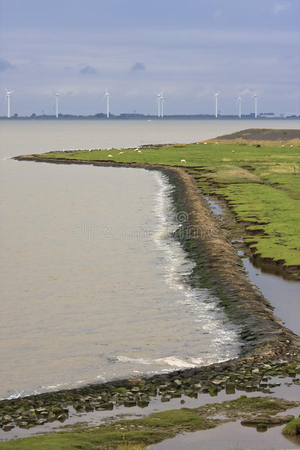 Windmills against the horizon, Punt van Reide, Holland. The Punt van Reide are wetlands in the province of Groningen in the northern Netherlands. This mix of royalty free stock photos
