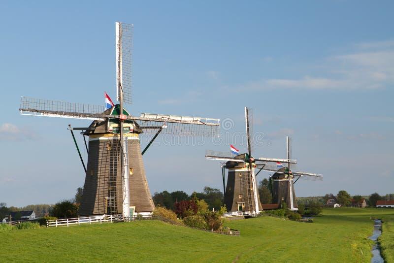 Windmills On Dutch Countryside Stock Photo