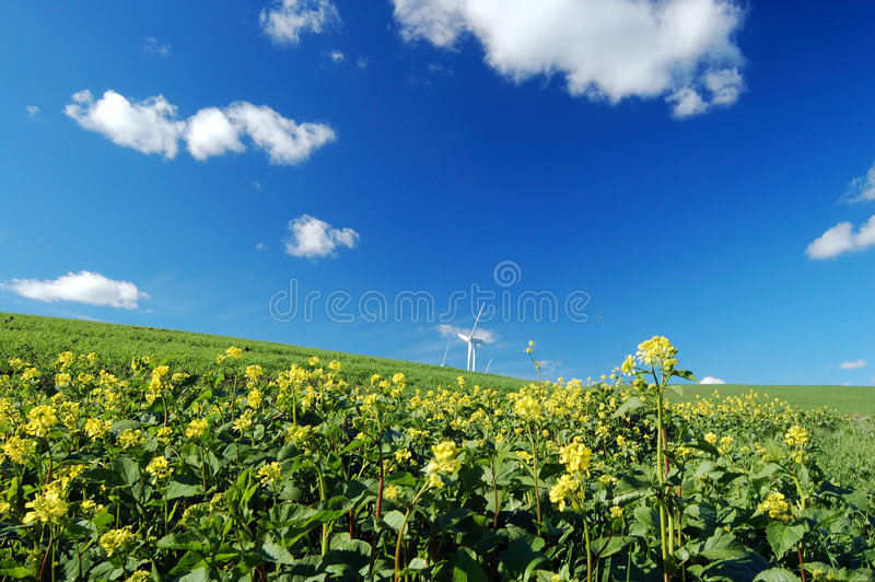 Windmills in field stock photography