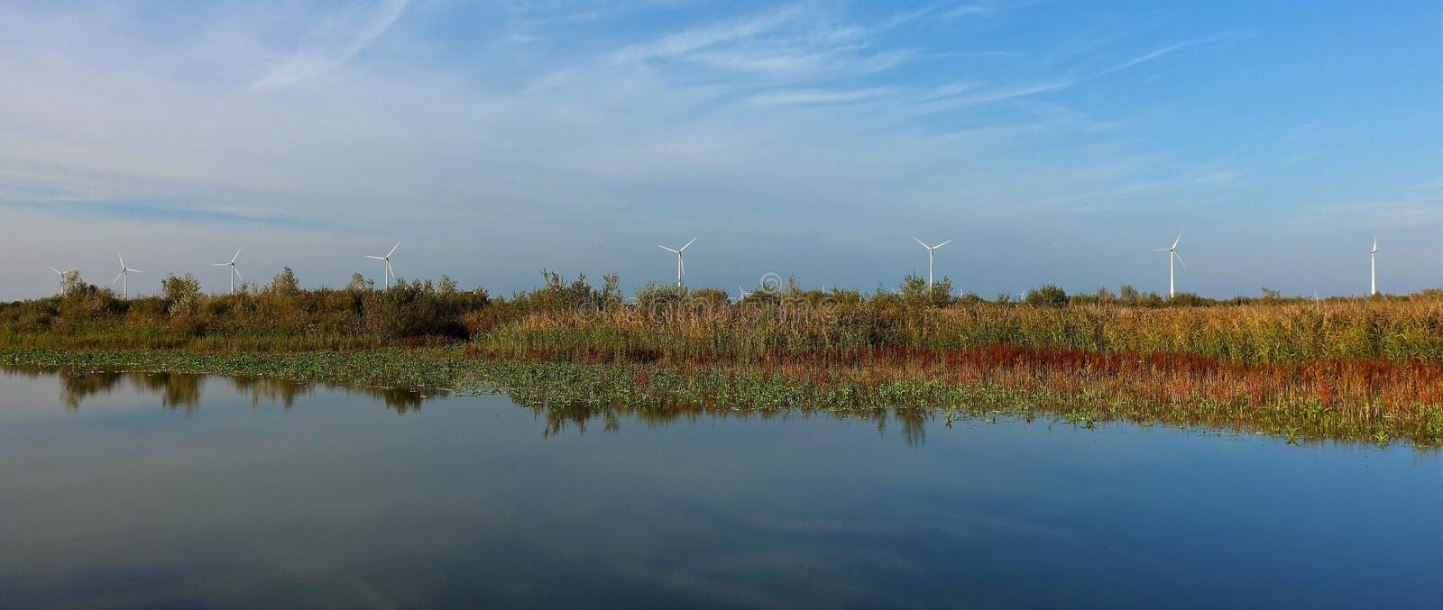 Windmills at Harderbroek Flevoland. Flevoland and windmills belong together. Autumn brings brown and yellow colours stock photo