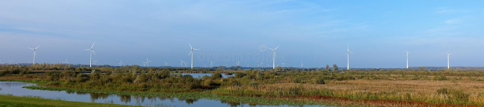 Windmills at the Harderbroek Flevoland. Flevoland and windmills belong together. Autumn brings brown and yellow colours royalty free stock photo