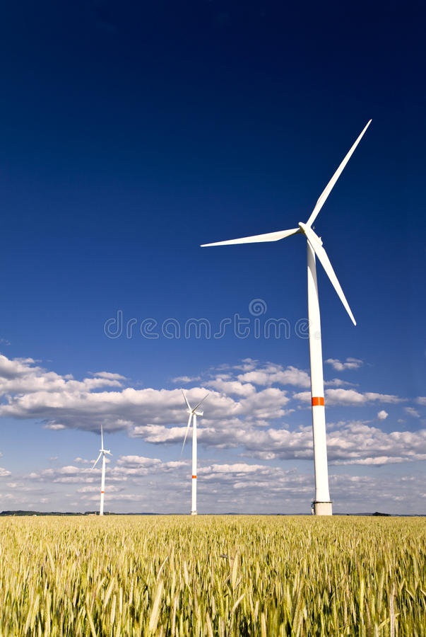 Free Windmills In A Field Of Rye Royalty Free Stock Images - 14656089