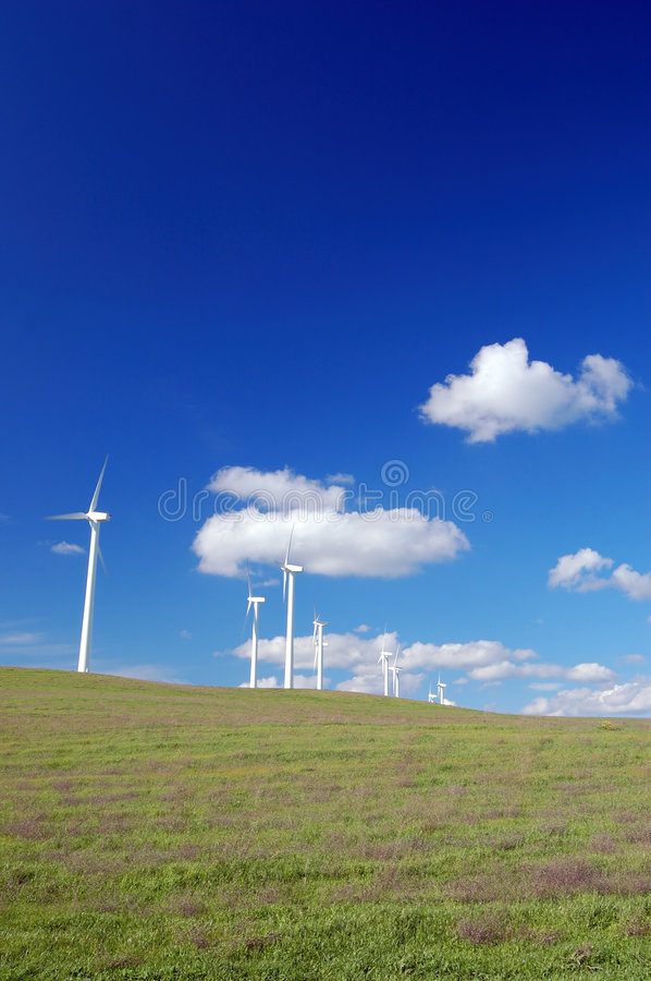 Free Windmills In Field Royalty Free Stock Photography - 600957