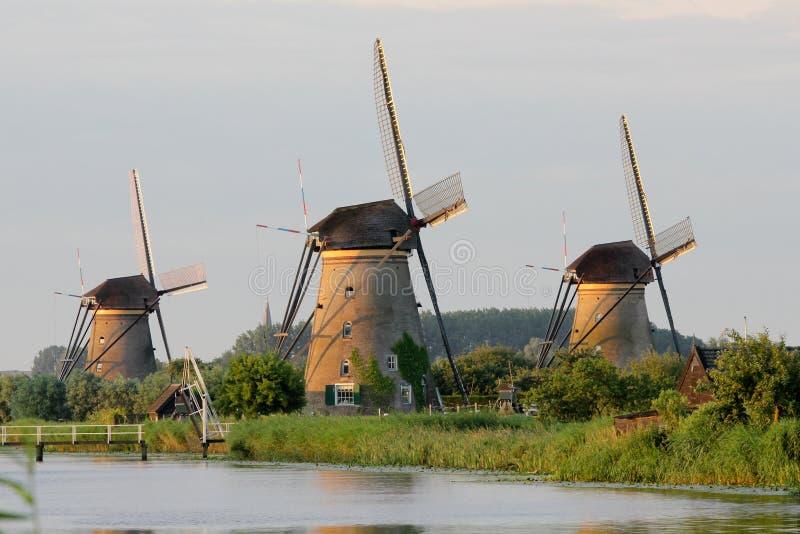 Windmills at Kinderdijk royalty free stock photos