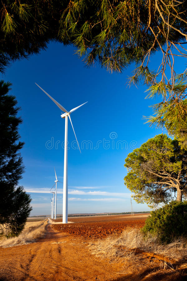 Windmills and sunflowers royalty free stock photography