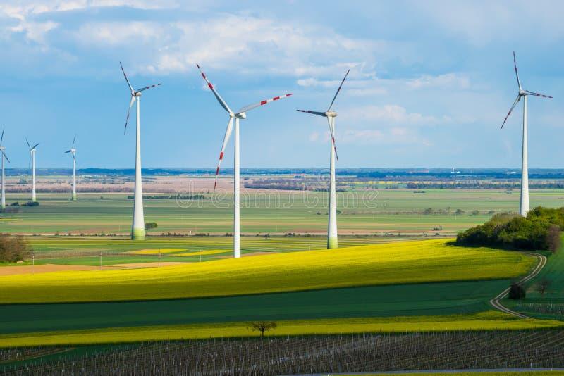 Windmills in yellow field stock image