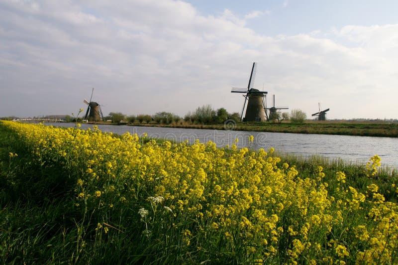 Windmolen aan rivierkant royalty-vrije stock fotografie