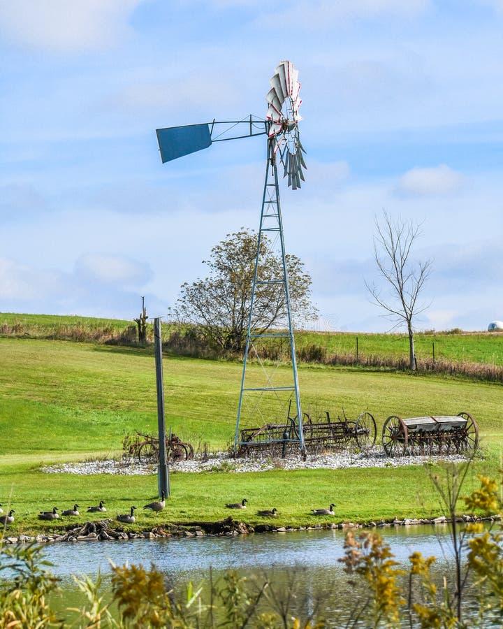 Windmolen, Antieke landbouwuitrusting, ganzen, Pond stock afbeelding