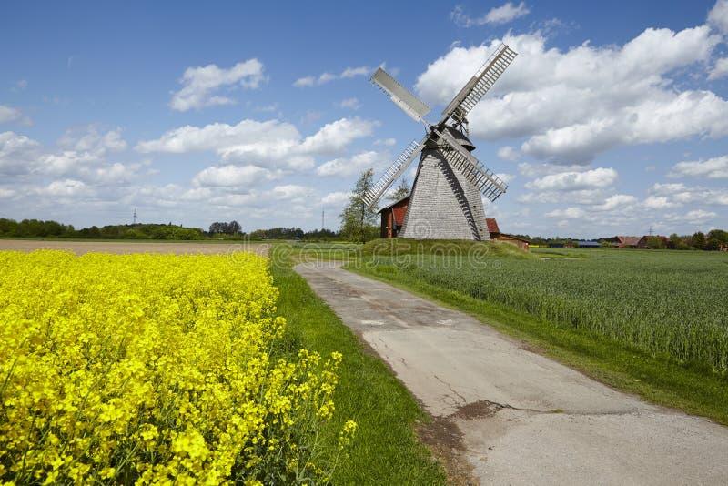 Windmolen Bierde (Petershagen, Duitsland) stock foto