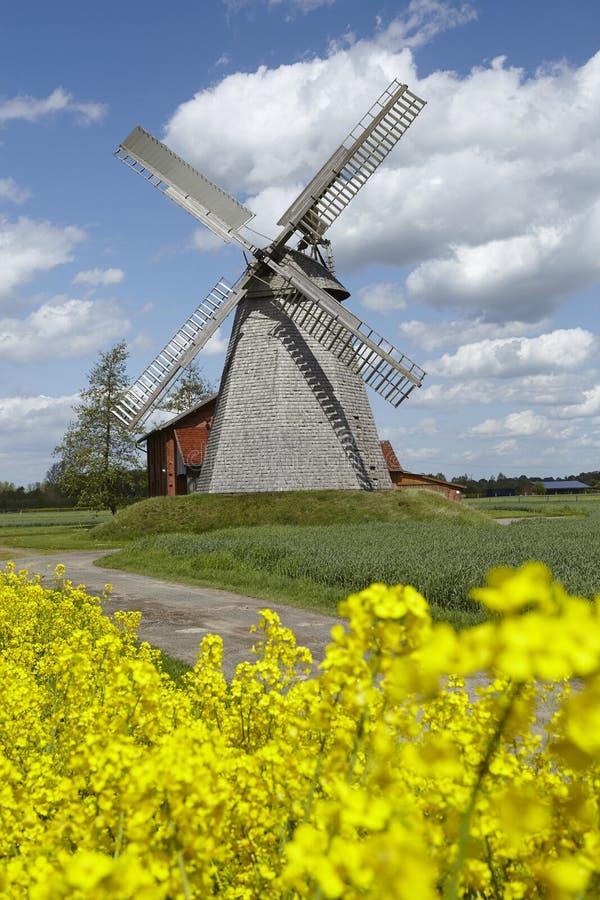 Windmolen Bierde (Petershagen, Duitsland) royalty-vrije stock foto's