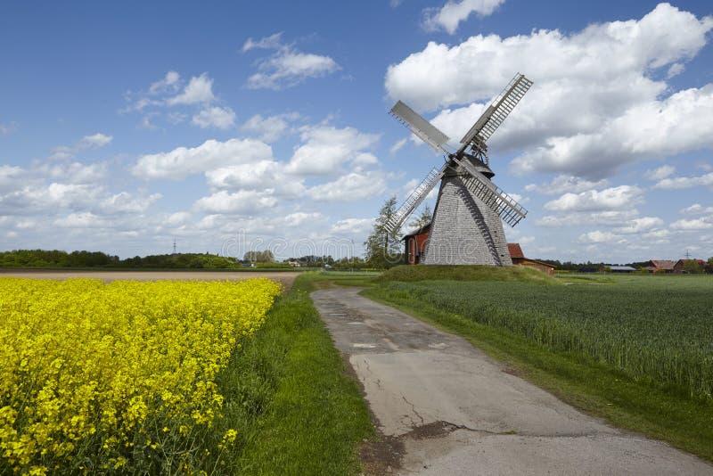 Windmolen Bierde (Petershagen, Duitsland) stock fotografie