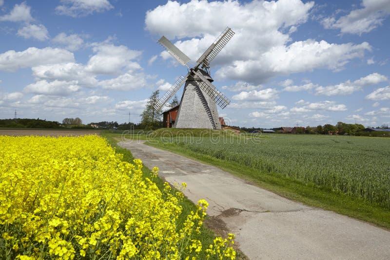 Windmolen Bierde (Petershagen, Duitsland) royalty-vrije stock fotografie