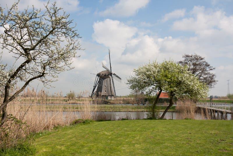 Windmolen in de lente in Nederland stock afbeelding