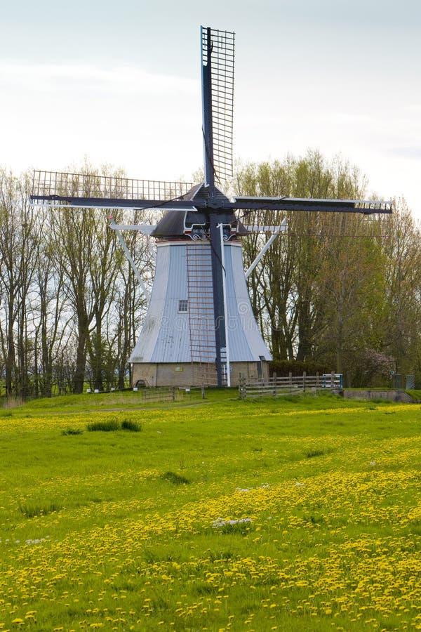 windmolen dichtbij Aldtsjerk, Friesland, Nederland stock fotografie