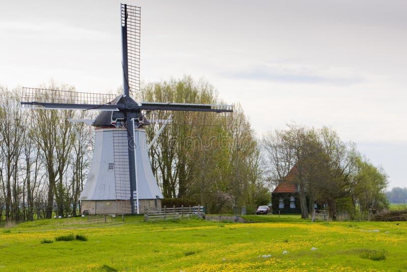 windmolen dichtbij Aldtsjerk, Friesland, Nederland stock afbeelding